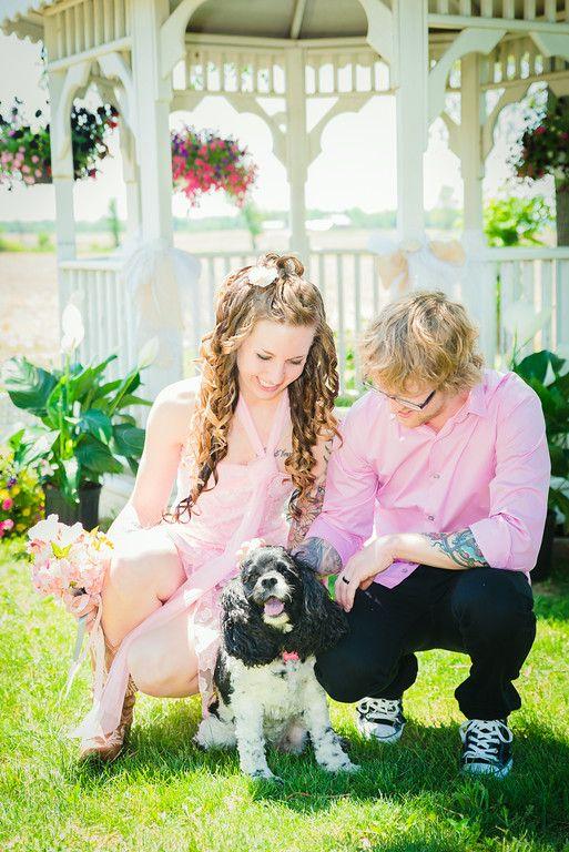 زفاف - Pets   Weddings