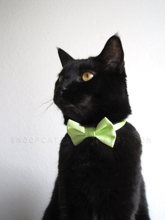 زفاف - Cat Bow Tie - Can't Pinch Me