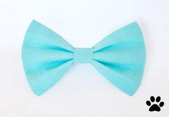 زفاف - Aqua blue bow tie - cat bow tie, dog bow tie, collar attachment