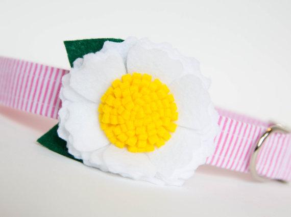 زفاف - Flower Dog Collar - White Blossom on Pink Seersucker