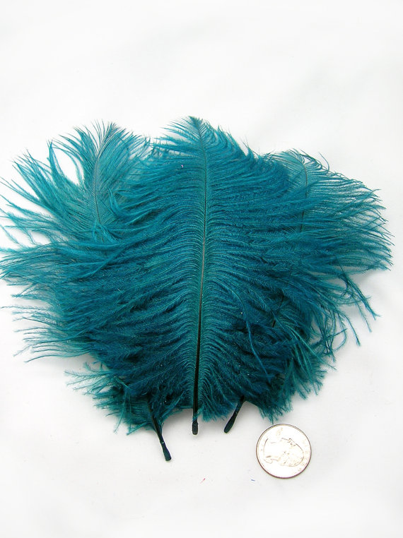Mariage - TEAL BLUE Ostrich Feather Drab (3 feathers) Pristine DIY ostrich feathers for wings, fascinators, wedding centerpieces, bouquets,millinery