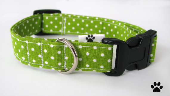زفاف - Lime Green Polka Dot - pet collar, dog collar, cat collar
