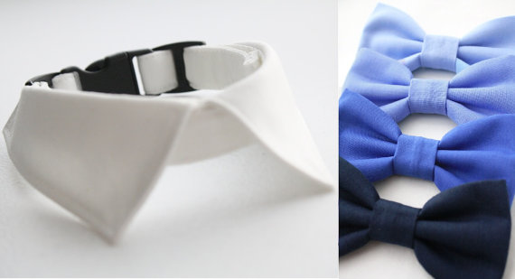 Свадьба - Dog Wedding Shirt Collar Set & Bow Tie Blue Navy Periwinkle Bowtie, Cat Shirt Collar Bowtie