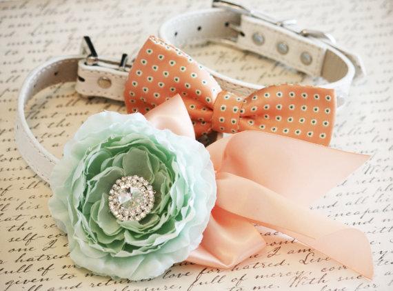 زفاف - Peach and Mint Dog Collars,2 Dog Collars, Bow tie and Floral collar, Pet wedding accessory, Dog Lovers
