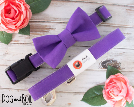 Свадьба - Dark Purple Dog Collar with Optional Removable Bow Tie by Dog and Bow
