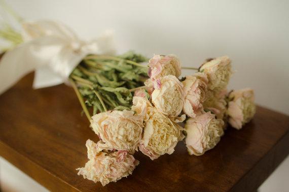 Mariage - Bunch of cream dried peonies, cream peonies, ivory peonies, dried peonies, cream peony,  cream dried flowers