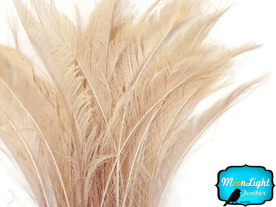 Свадьба - Peacock Feathers, 5 Pieces - IVORY BLEACHED Peacock Swords Cut Feathers : 336