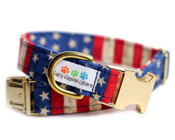 Свадьба - Gold USA dog collar - Brass USA Collar