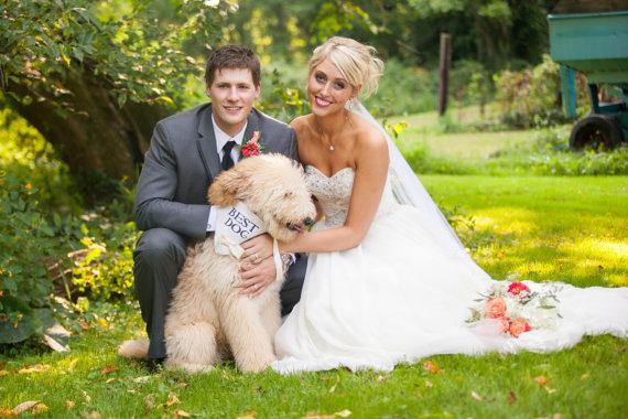 زفاف - Ivory Best Dog Boy Bowtie Dog Collar Bandana Rustic Burlap Wedding Photo Prop