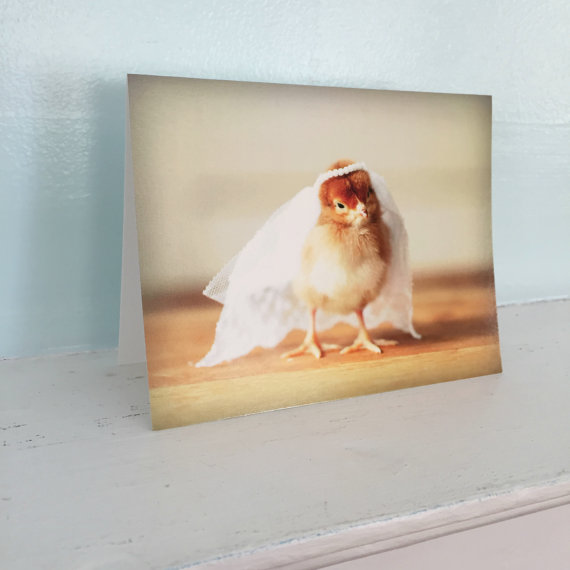 Mariage - Chick in Bridal Veil Photo Wedding Engagement Card Chickens in Hats