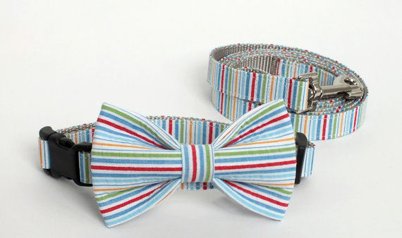 Свадьба - Multi Color Seersucker Collar and Leash Set, Wedding Set