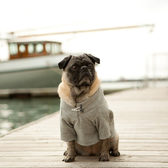 زفاف - First Mate Dog Sweatshirt