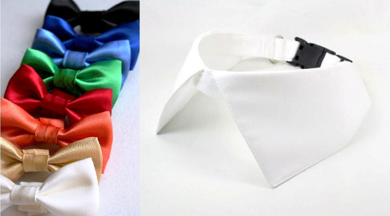 Свадьба - Dog Shirt Collar Satin Bow Tie Set, Dog Wedding Collar with D Ring for Leash White Red Blue Green