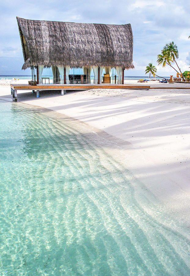 Wedding - Early Morning At The Maldivian Resort 1 Print By Jenny Rainbow