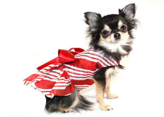 Свадьба - Candy Cane Kisses Dog Dress