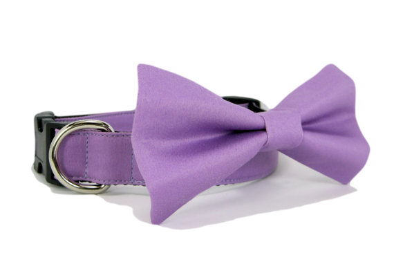 Свадьба - Wedding dog collar-Purple Dog Collar with bow tie set  (Mini,X-Small,Small,Medium ,Large or X-Large Size)- Adjustable