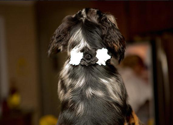 Свадьба - Floral Dog Collar, Flower dog collar, pet collar, dog accessories, pets, puppy collar, wedding dog