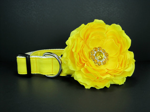 Свадьба - Yellow  Dog Collar with flower set  (Mini,X-Small,Small,Medium ,Large or X-Large Size)- Adjustable