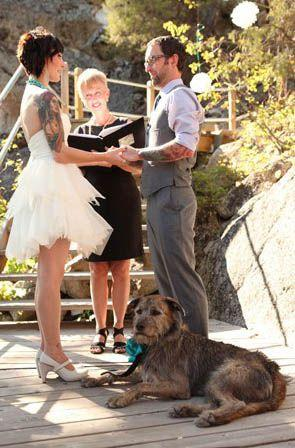 زفاف - 29 Perfectly Adorable Ways To Include Your Pet In Your Wedding