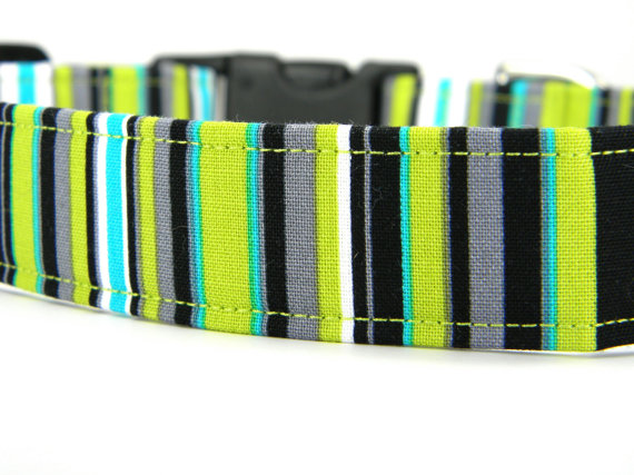 Свадьба - Dog Collar, Lime Green Stipe Dog Collar, Pet Collar: Lagoon Stipe