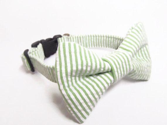 Свадьба - Designer Dog Collar and Bow Tie CUSTOM Green Seersucker With Matching Bowtie - boy dog collar, springtime, bowtie