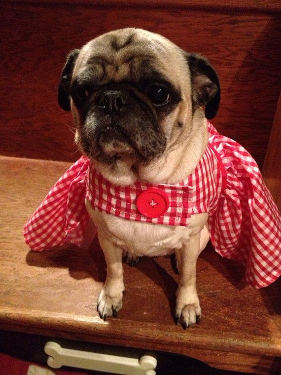 زفاف - Pug or small dog Red Gingham Dress