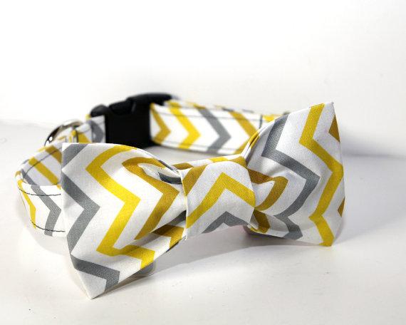 زفاف - Wedding Dog Collar -  BowTie Dog Collar - Chic Chevron Bow Tie