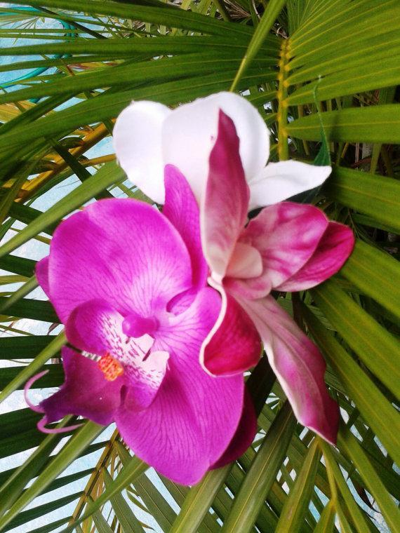 tropical flower cliphawaiian orchids, maui pink, purple, plumeria, Natural flower