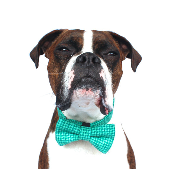 Свадьба - Dog Bow Tie, Green turquoise, Houndstooth Dog Bow