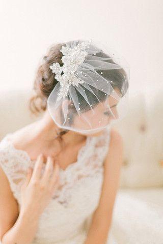 Hochzeit - Crystal Lace Birdcage Veil #718