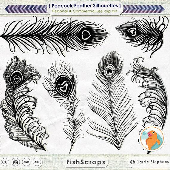 Wedding - Peacock Feather Clip Art, Feather Silhouettes, Peacock Wedding Invitation Graphics, Photoshop Brushes + PNG Digital Stamps, Bird