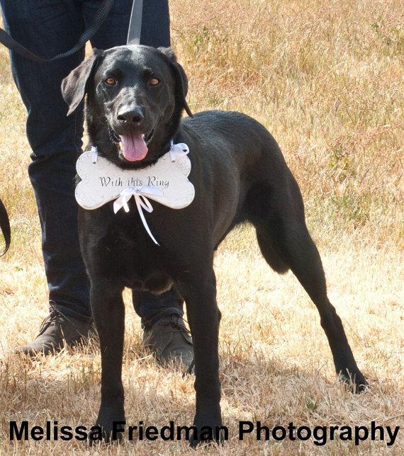 زفاف - RING BEARER Dog Ring Bearer Pillow