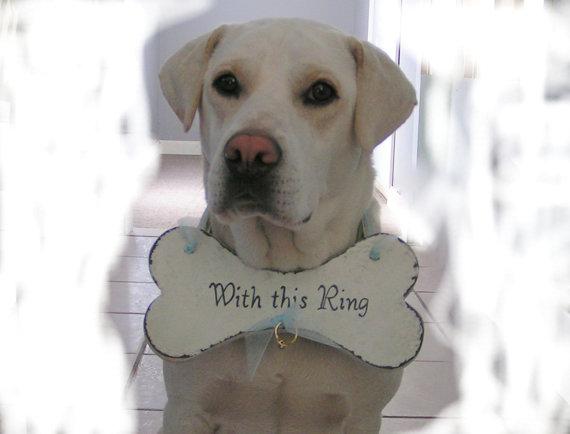 Свадьба - Foliage green writing and White ribbon, white bone .  Special Wording RING BEARER Dog Bone