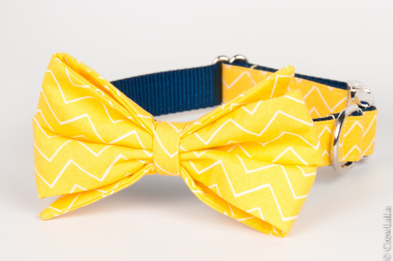 Mariage - Yellow & Navy Zig Zag Belle Bow Dog Collar