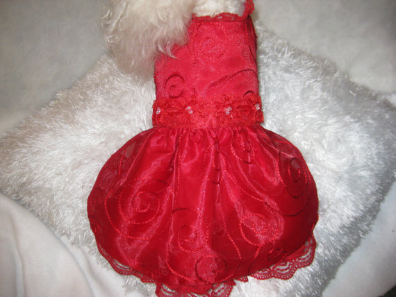 Свадьба - Dog Dress--Red Embroidered Organza