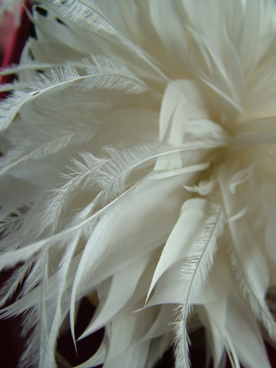Hochzeit - Feathered wedding hairpiece headband tiara veil wedding veil