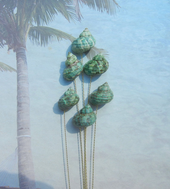 Mariage - Seashell Stems - 6 Naturally Colorful Jade Turbo Seashells for Bridal Bouquets or Centerpieces