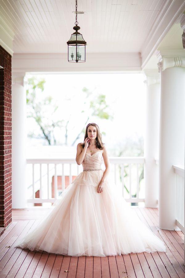 Wedding - Peter Rabbit & The Bride