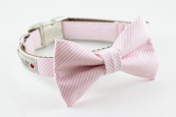 Свадьба - Light Pink Stripes Bowtie Dog Collar with Nickel Buckle