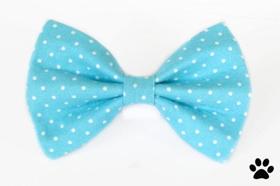 Mariage - Aqua blue polka dot - cat and dog bow tie