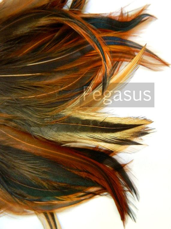 Mariage - Loose Natural Brown rooster feathers (12 PIECES) popularly used for wedding flowers, fascinators, derby hats and flapper headdress