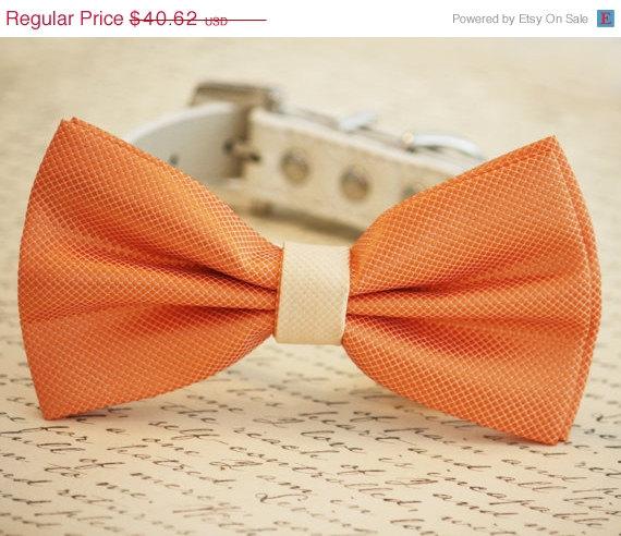 Свадьба - Orange and Ivory wedding accessory, Orange Dog Bow Tie, Pet Wedding accessory, Orange wedding idea, Summer Wedding