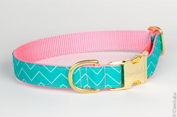 Свадьба - Teal & Pink Zig Zag Dog Collar