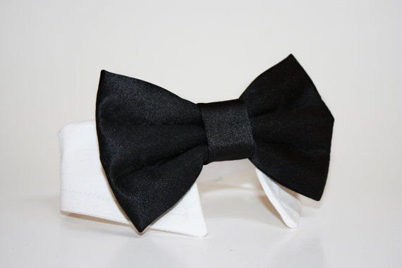 Свадьба - Black Dog Bow Tie and Shirt Collar-  Black tie- Wedding Dog Tie- Shirt Collar