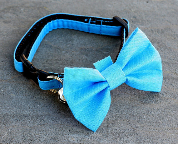 Свадьба - Cat Collar with Bow Tie - Turquoise Blue