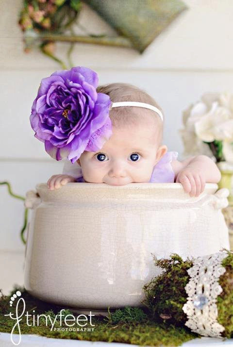 Свадьба - Flower Girl, Flower Headband, Rose Headband, Large Hair Band, Hair Accessories, Purple Rose, Pageant Accesories, White Rose, Garden Party
