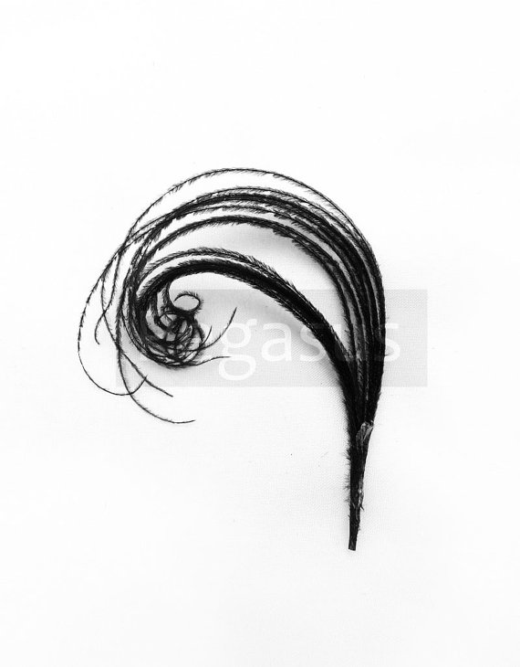 Mariage - BLACK Mini cruelty free peacock feather plume (12 Plumes)(16 color options) boutonnieres,earrings,fascinators, wedding invitations