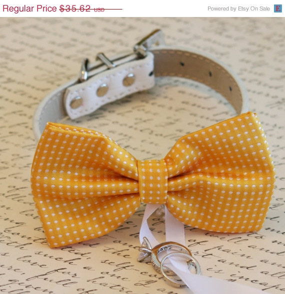 Свадьба - Yellow Dog Bow Tie, Dog ring bearer, Pet Wedding accessory, Pet lovers, Yellow bow attached to white dog collar, Summer wedding, Spring