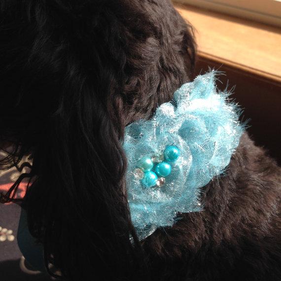Свадьба - DOG FLOWER COLLAR - Blue Satin tie with Blue flowers,Pet Wedding,Ties on, Pet Flower Dog Wedding, Pet Corsage, Dog flower , Dog Bow