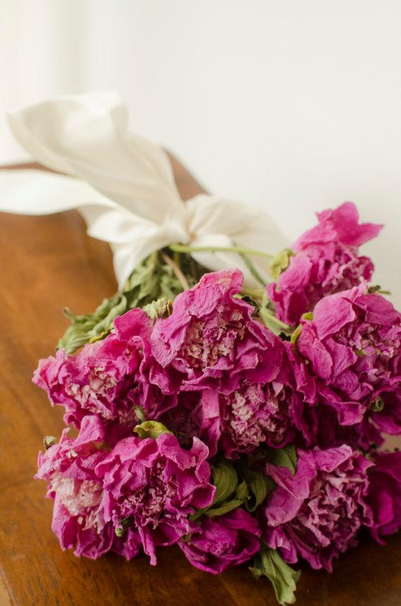Bunch Of Medium Pink Dried Peonies Pink Peonies Dark Pink Peonies